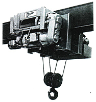 Reliable Type RPM Monorail Hoists